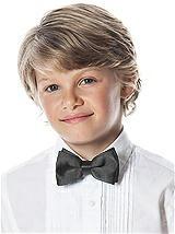 Boy's Clip Iridescent Taffeta Bow Tie