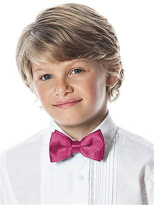 Boy's Clip Bow Tie in Silk Shantung http://www.dessy.com/accessories/boys-clip-silk-shantung-bow-tie/