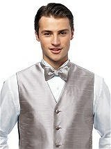 Silk Shantung Bow Tie